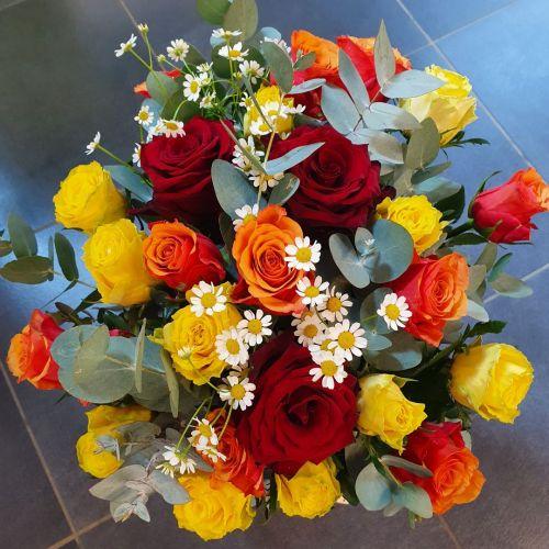 Mix 25ks růží s eukalyptem 70cm dlouhé