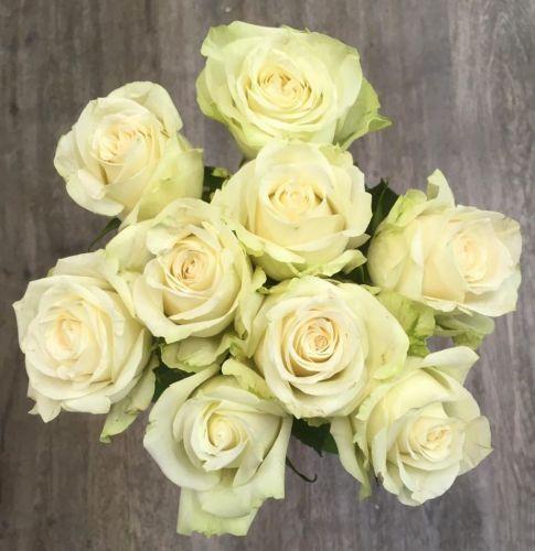 Kytice bílých růží 70 cm dlouhé