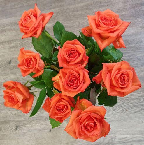 Kytice oranžových růží 70 cm dlouhé